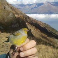 """Stazione Ornitologica """"Colle delle Finestre"""""""