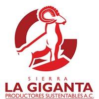 Productores Sustentables Sierra La Giganta