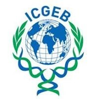 ICGEB Biosafety Capacity Building