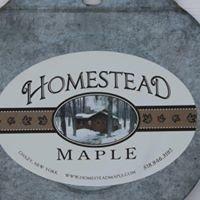 Homestead Maple