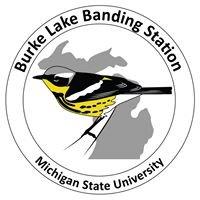 Burke Lake Banding Station