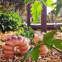 Lochiel Park Community Garden