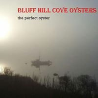 Bluff Hill Cove Oyster Company