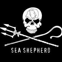 Sea Shepherd Montpellier - Officiel