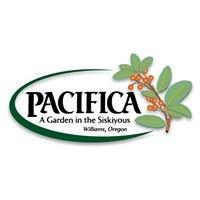 Pacifica: A Garden in the Siskiyous