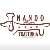 Nando Milano • Downtown Champaign