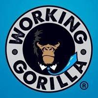 Working Gorilla