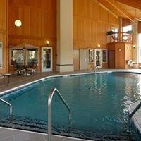 Comfort Inn & Suites Lansing / Dimondale
