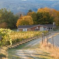 Esther Bricques Winery and Vineyard