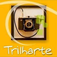 Trilharte Fotografia E Aventura