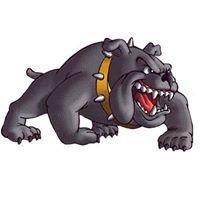 Douglas High School - Bulldogs