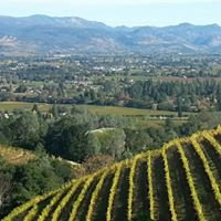 Napa Terroir Wine Tours      Timothy Murphy