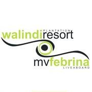 Walindi Resort & MV FeBrina
