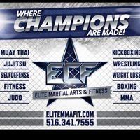 ECF Mixed Martial Arts and Fitness Training Facility