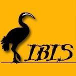 IBIS - Interkulturelle Arbeitsstelle