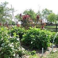 Pelham Lane Farm