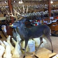 Hills of Texas Taxidermy