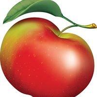 Lyman Orchard - Apple Barrel