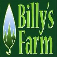 Billy's Christmas Tree Farm