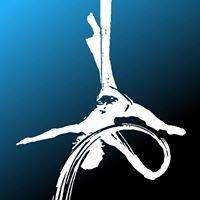 Mendocino Center for Circus Arts (CircusMecca)