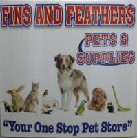 Fins and Feathers Inc.