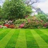 WestEnd Nursery & Landscaping