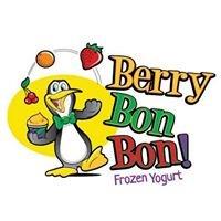 Berry Bon Bon Frozen Yogurt Shop