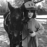 The Palmetto Equestrian Therapeutic Riding Program