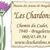 """Maison des Jeunes """" Les chardons """" Brugelette"""