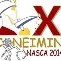 "X Coneimin  Nasca 2014"""