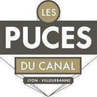 Puces Du Canal Lyon