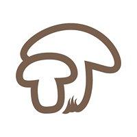 Kyriakides Mushrooms