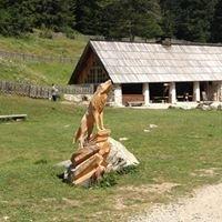 Parc Alpha Loup