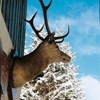 Ermitage Resort Vosges