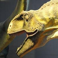 Musée des Dinosaures d'Espéraza