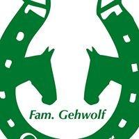 """""""Griesbauer""""    Fam. Gehwolf / Wagrain"""