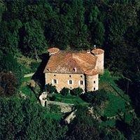Château du Pin - Fabras - Ardèche - France