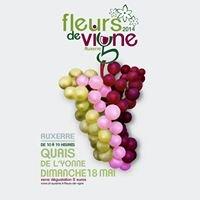 Fleurs De Vigne Auxerre