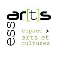 Essarts, espace arts et cultures de Bram
