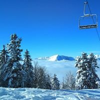 Ski Alpin Chartreuse Officiel