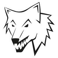 Wolf Events agencja eventowa Szczecin