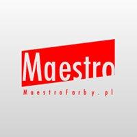 Salon Maestro - Ekskluzywne Dekoracje Wnętrz - Sikkens Teknos Oikos