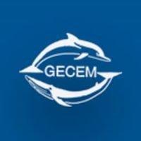 Groupe d'Etude des Cétacés de Méditerranée
