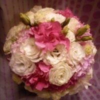 Kwiaciarnia Herchel