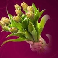 Kwiaciarnia Gosia