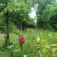 Le Jardin de la Reine