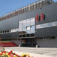 Mrowisko. Centrum Kultury Studenckiej Politechniki Śląskiej