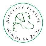 AFN Fundacja