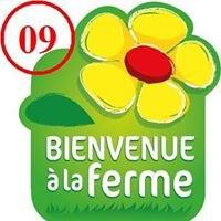 Bienvenue à la Ferme Ariège