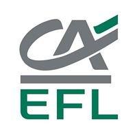 EFL - Wiedza i Biznes